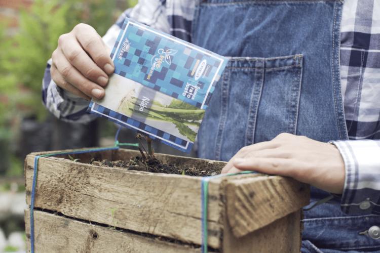 CREA promueve la agricultura urbana